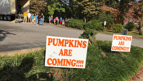 Annual pumpkin patch to be held amid pandemic; volunteers need