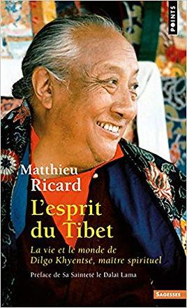 tibet vie.jpg