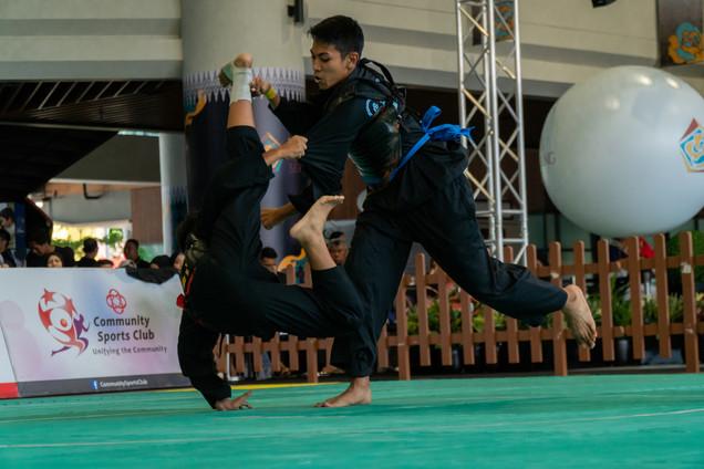 Inter-CC Pencak Silat Championship 45 (1