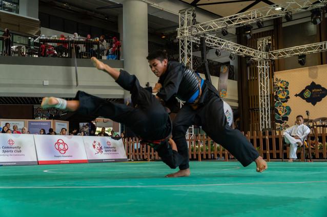 Inter-CC Pencak Silat Championship 46 (1