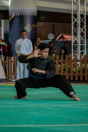 Inter-CC Pencak Silat Championship 17 (1