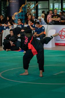 Inter-CC Pencak Silat Championship 30 (1