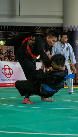 Inter-CC Pencak Silat Championship 36 (1