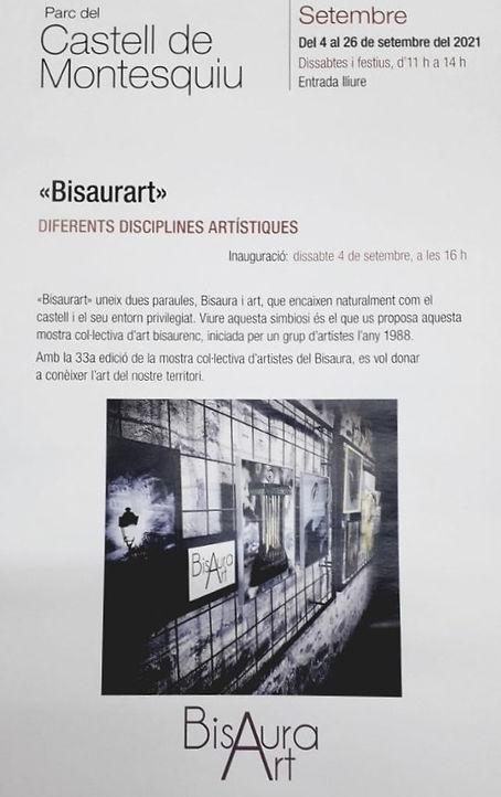 Bisaurart21_edited.jpg