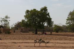 Burkina Canon 406