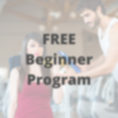 Beginner Program.png