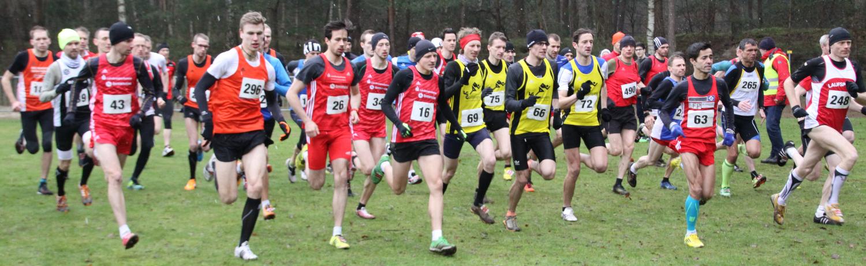 Zwölf Wimpel für Laufteam-Septett