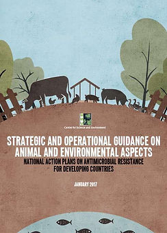 FST_AMR_Strategic _ Operational Guidelin
