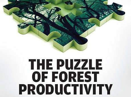 Forestry_Forest Productivity_FDC.jpg