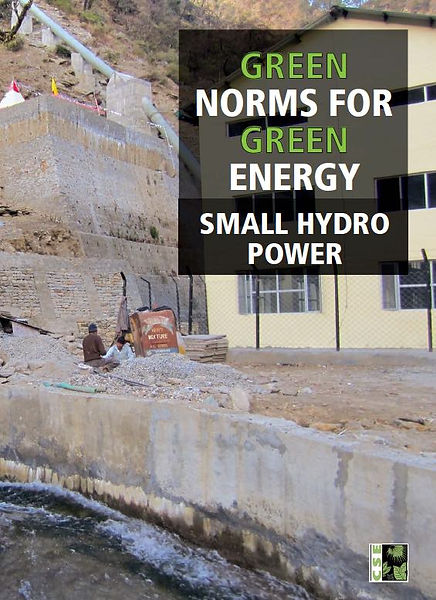 Energy_Small Hydro_Green Norms.jpg