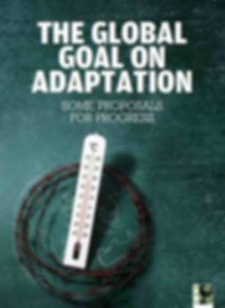 Climate_Global goal on adaptation.jpg