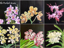 The Orchid Series ...