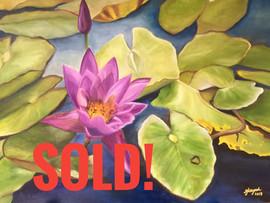 Sold it  !!!