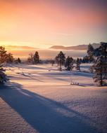 beautiful-cold-dawn-1900203.jpg