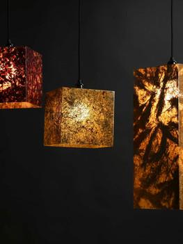 Viaplant-Columna-viseca lampa.jpg