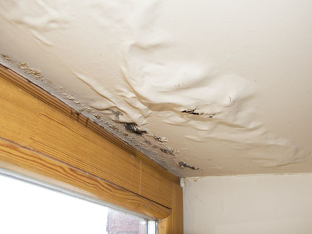 The Consequences Of Delayed Water Damage Restoration