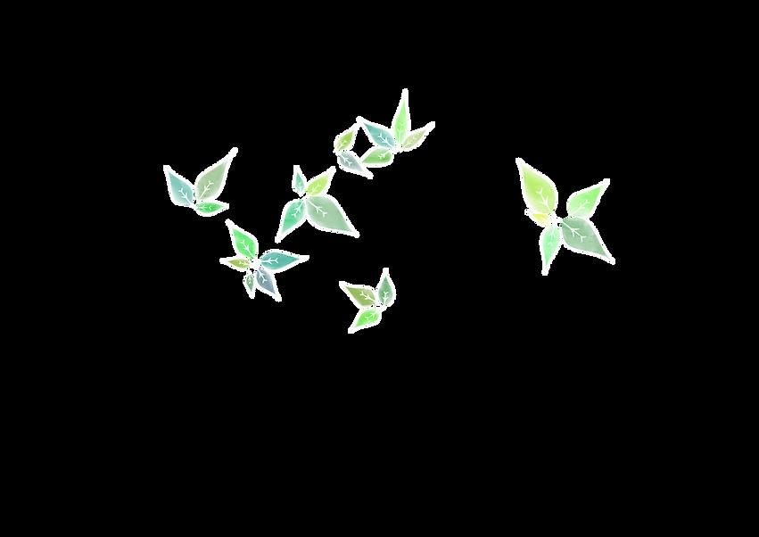 Feuilles blanc.png