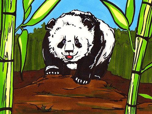 Yin Yang le petit panda (Version DVD)