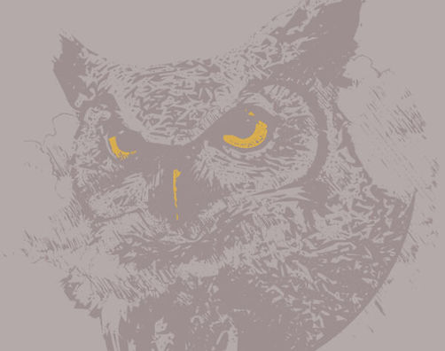 owl3-600x473.jpg