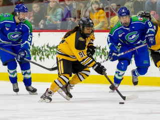 Women in Professional Sport: Insights into the National Women's Hockey League
