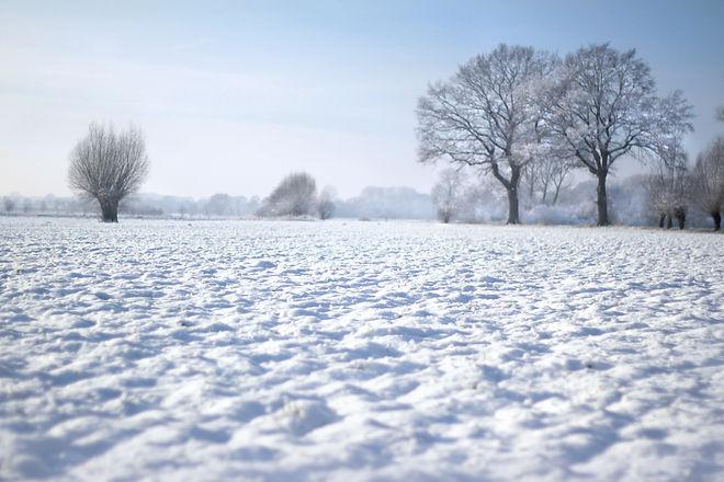 schneelandschaft-feld.jpg