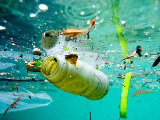COME RIPULIRE GLI OCEANI? Ecco delle soluzioni.