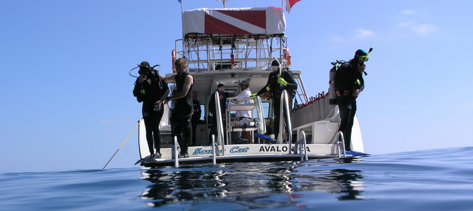 dive boat.png