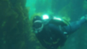 Advanced open water scuba diving on Catalina