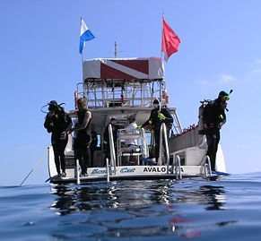 Catalina Island boat dives
