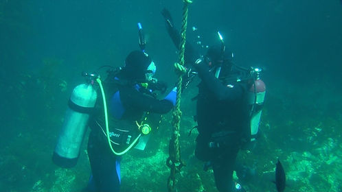 rescue diver course on Catalina