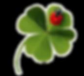 logo nouveau site.png