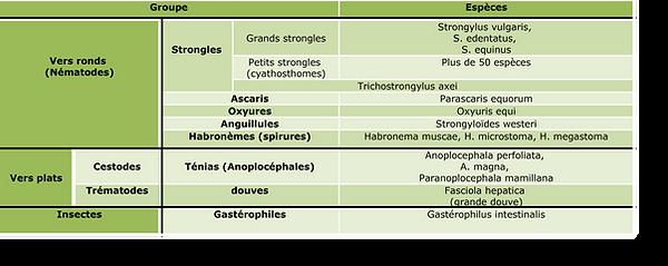 tableau parasites.png