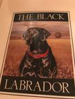 The Black Labrador of HTX