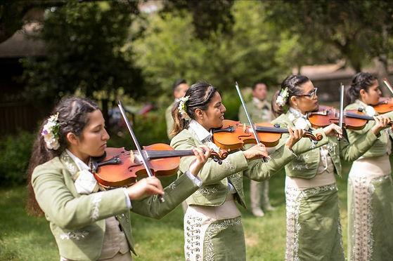 Violin Section at Wedding