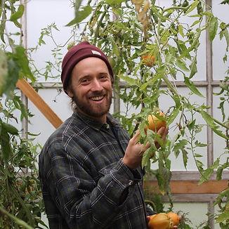 Lucas Meyer perma terra tomaten