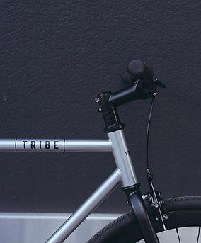 Tribe Bicycle.jpg