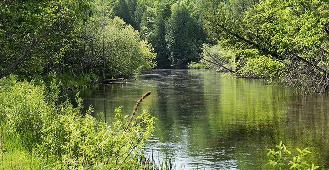 white river.jpg
