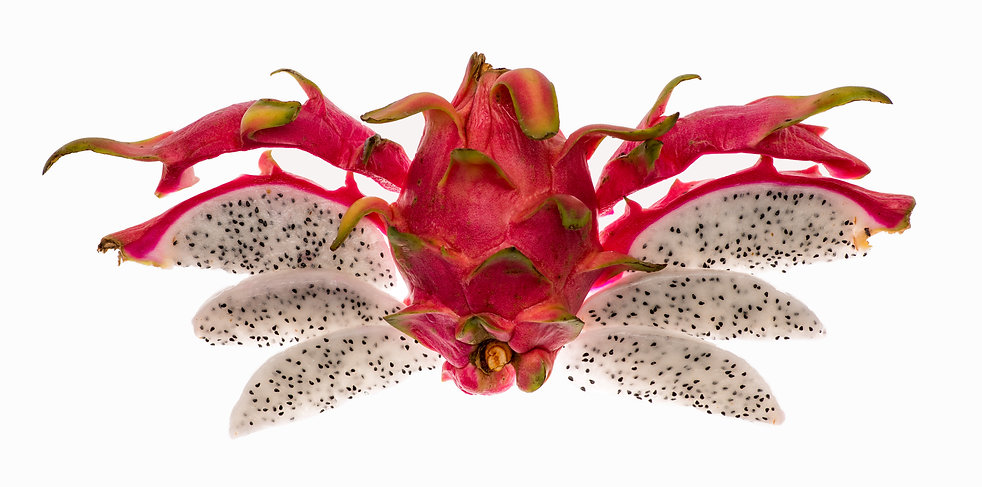 Pitahaya, die Drachenfrucht, ist ausser