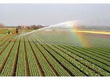 botanical, horticultural, agricultural spectroscopy