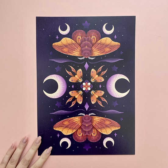 Sunset Moths