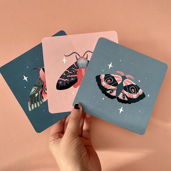 Trio of Moth Prints