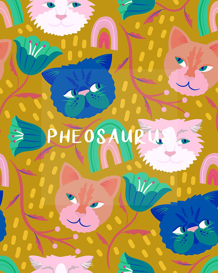 - Kitty Cat Colourful -