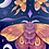 Thumbnail: Sunset Moths