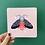 Thumbnail: Trio of Moth Prints