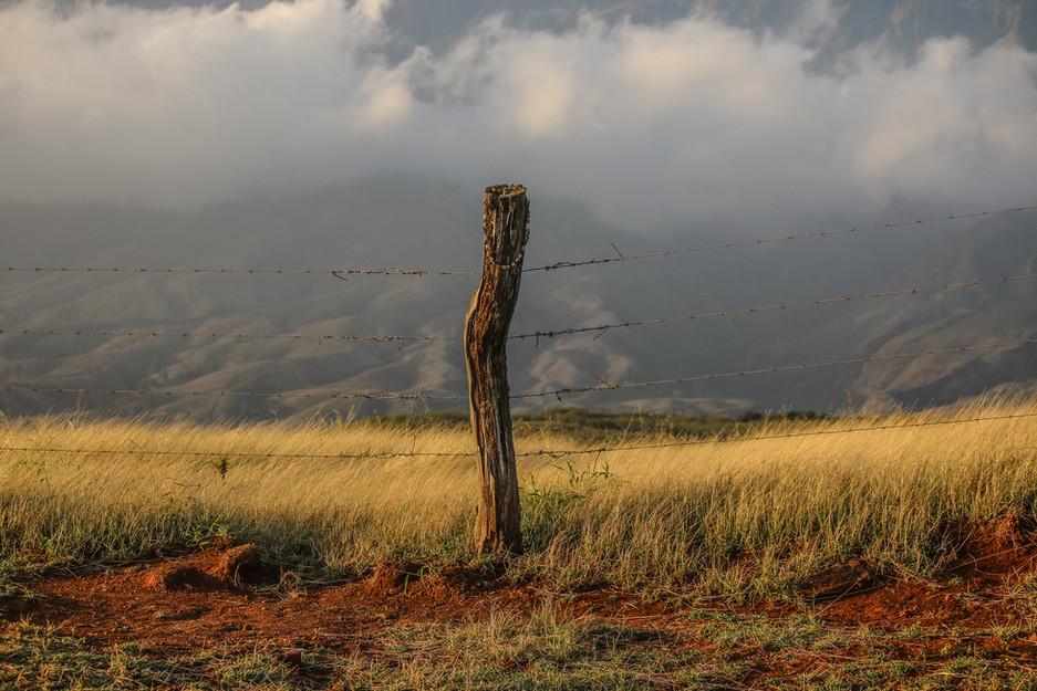 Piilani ranch post