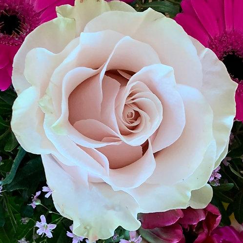 Aromaspray Rose