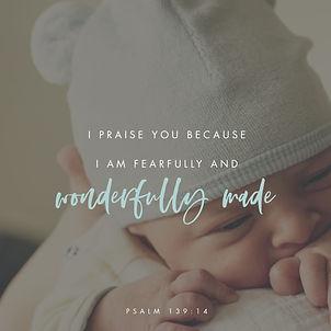 psalms139 14.jpg