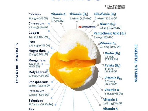 Eggs and their benefits