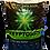Thumbnail: Kryptonite Soil & Apparel Package