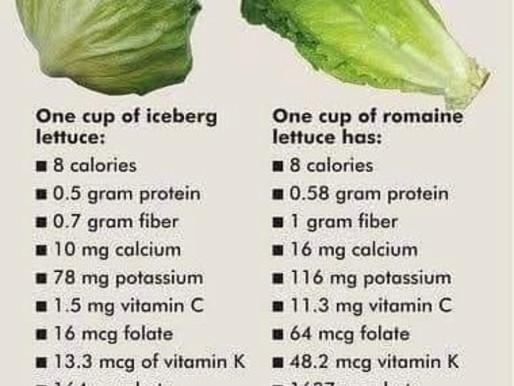 Iceberg verses romaine lettuce